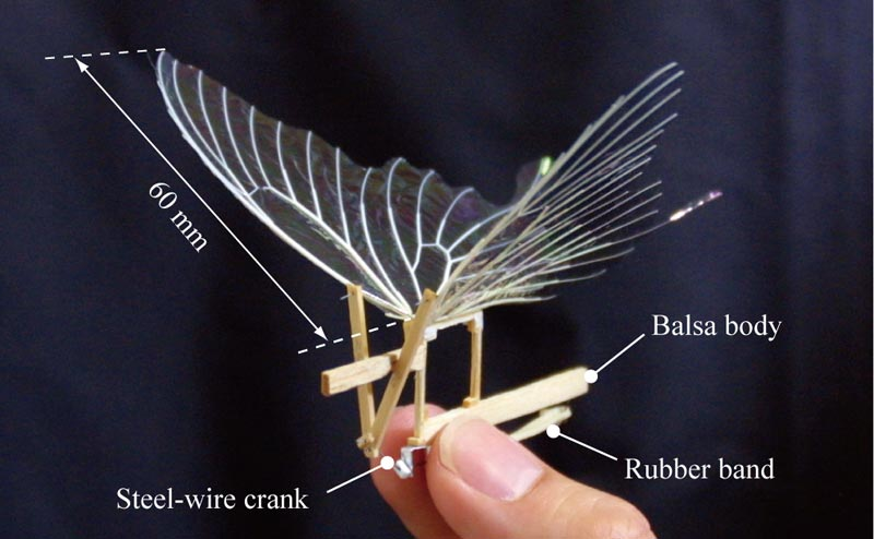 Artificial Butterfly In Flight And Filmed Asia Iop Org