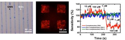 Graphene nanonet patterning, fluorescence imaging and DNA detection
