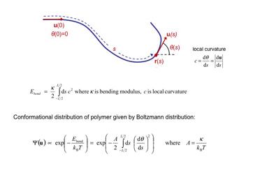 Slide 12 Bending the WLC model