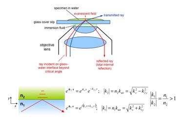 Slide 5Total internal reflection fluorescence (TIRF) microscopy.