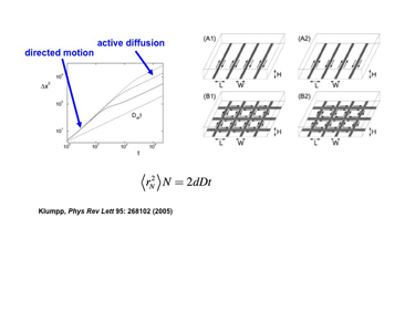 Slide 10 Active diffusion