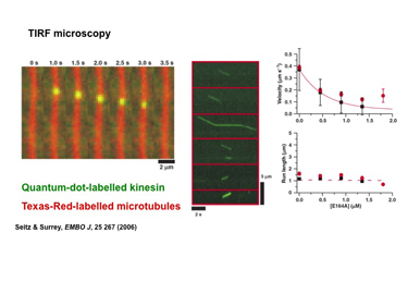 Slide 8	Trafficking – single-molecule measurements of kinesin