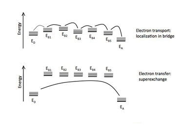 Slide 12 Bridge-mediated electron transfer