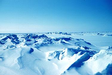 Arctic sea ice in 1949