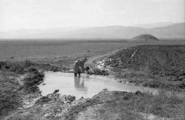 1960s Jordan Valley irrigation