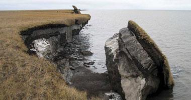 Collapsed permafrost block of coastal tundra on Alaska's Arctic coast