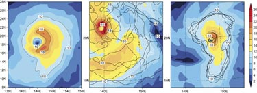 Horizontal wind-speed fields for typhoon Songda