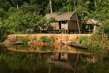 Amazonian household
