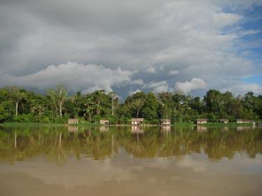 Amazonian community