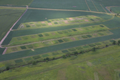 Landscape Biomass Project