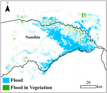The 2011 flood extent and flooding in vegetation