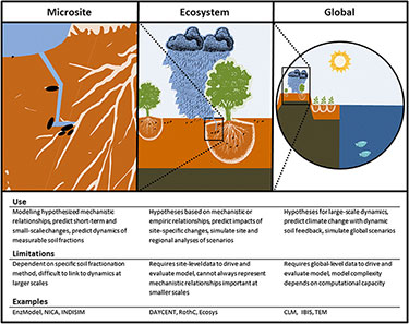 Breaking the continuum of soil organic matter dynamics into three scales commonly used to formulate soil organic matter models