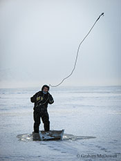 Sea ice collapse