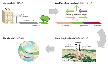 Figure 2. Geographical considerations