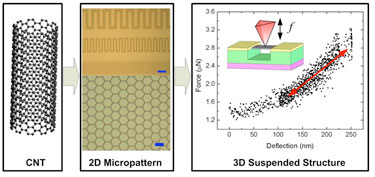 2D micropattern and 3D suspended thin-film structure