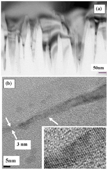 Black silicon: all-crystalline nanoneedles