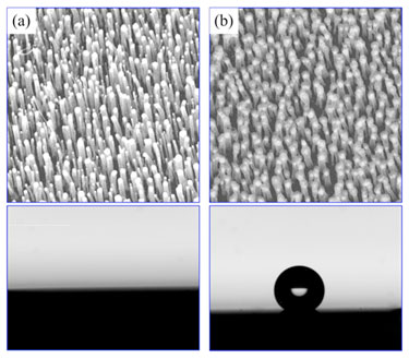 Superhydrophilic and superhydrophobic carbon nanotube arrays