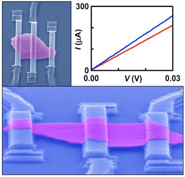 Bi<sub>2</sub>Se<sub>3</sub> thin-film crystal suspended across metal electrodes
