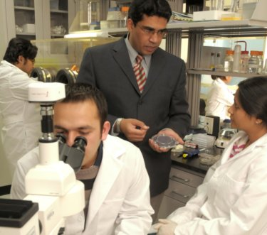 Waseem Asghar (first author of the study) and Dr Samir Iqbal (third from left) in the Nano-Bio Lab at the University of Texas at Artlington.