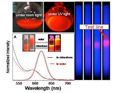 Bio-marker: nanocrystals as fluorescent labels
