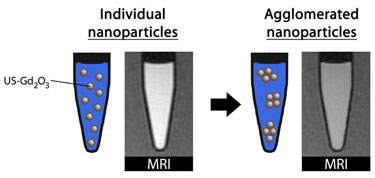 Assessing the impact of agglomeration on the performance of Gd<sub>2</sub>O<sub>3</sub> nanoparticles