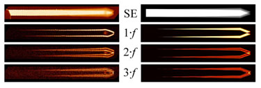 Experimental and simulated images of a vibrating AFM cantilever
