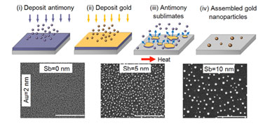 Effect of varying the thickness of the sacrificial antimony layer