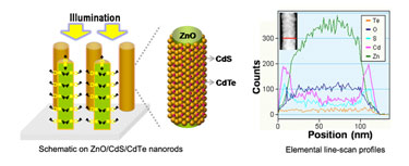 ZnO/CdS/CdTe nanorods on a conductive glass substrate