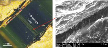 Composite fibre array