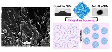 Liquid-like and solid CNTs in epoxy