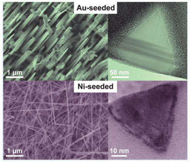 Gold- and nickel-seeded GaN nanowires