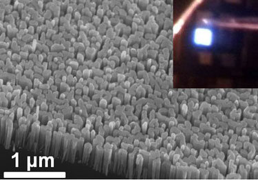 InGaN/GaN dot-in-a-wire LED heterostructures
