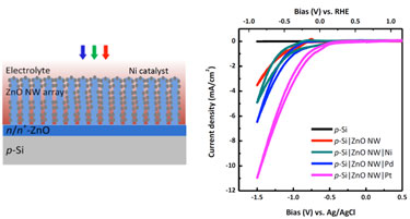 ZnO nanowire array (schematic) and cyclic voltammetry graphs