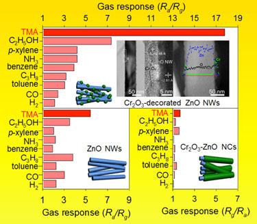 Enhanced response: Cr<sub>2</sub>O<sub>3</sub>-decorated ZnO nanowire sensors
