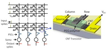 CNT spiking-neuron circuit and close-up of transistor structure