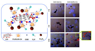 Biolabel: multicomponent graphene oxide nanosystems