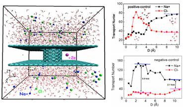 Nanopore system