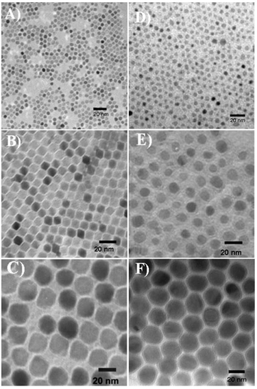 TEM images of CoFe<sub>2</sub>O<sub>4</sub> and FeCo nanoparticles