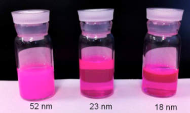 Fluorescent nanoparticles made of a biocompatible polymer linked to rhodamine
