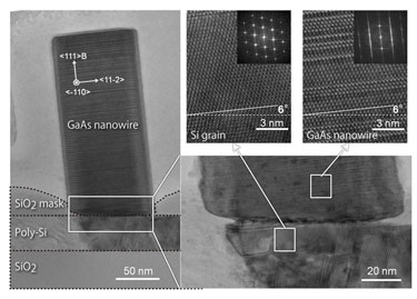 GaAs nanowire on poly-Si