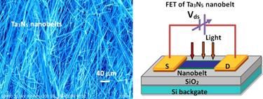 Ta<sub>3</sub>N<sub>5</sub> nanobelts and FET arrangement