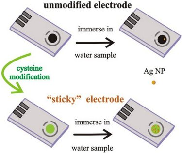 Silver nanoparticle immobilization