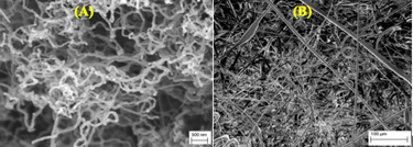 Hydrogen treated nanotubes and polymeric scaffolds