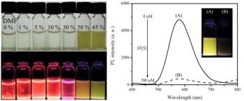 PA-Cu NC aggregates under UV light irradiation