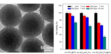 TEM images of <i>hm</i>-SiO<sub>2</sub>(AlC<sub>4</sub>Pc)@Pd nanoparticles and the corresponding cancer cell-killing efficiency