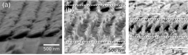FESEM images of the periodically patterned array of Ag nanocolumns.