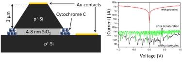 SOI-based vertical nanogap device