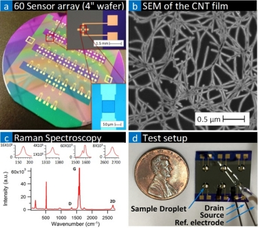 Carbon nanotube network sensor