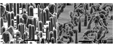 Silicon nanowires before and after heat treatment