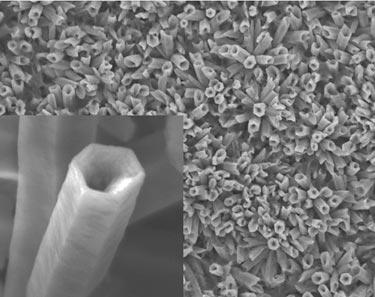 ZnO nanotube array